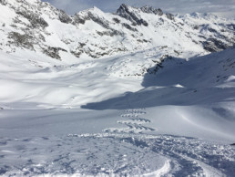Heliski Valgrisenche sci neve fresca - www.heli-ski.it